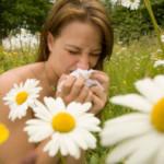 Alergia realna do pokonania