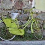 Rower mój przyjaciel